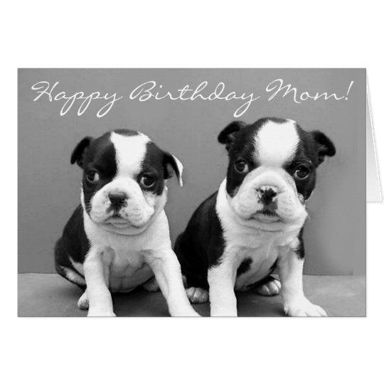 Happy Birthday Mum Boston Terrier Puppies card