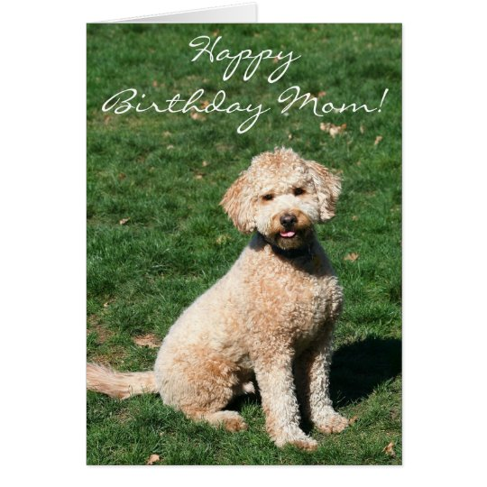 Happy Birthday Mum Mini Goldendoodle greeting card