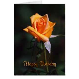 Happy Birthday Orange Rose Card