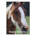 Happy  Birthday Paint Horse Equestrian Riding Card