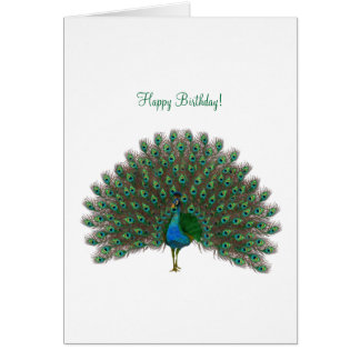 Happy Birthday ! - Peacock greeting card