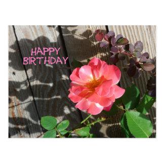 Happy Birthday Pink Rose Postcard