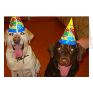 Happy Birthday Prima and Jake Greeting Card