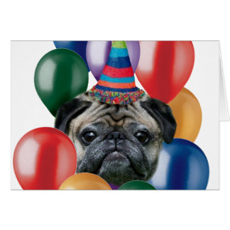 Happy birthday Pug dog Card