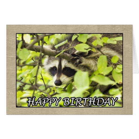 Happy Birthday Racoon In Tree Card