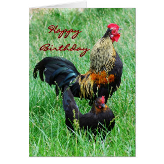 Happy Birthday Rooster and Hen Card