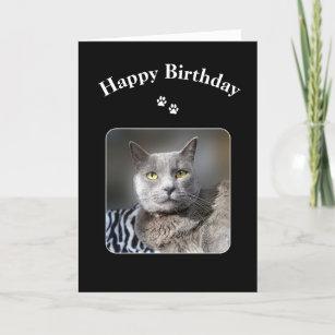 Happy Birthday Russian Blue Cat Card