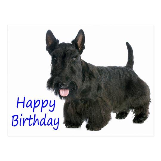 Happy Birthday Scottish Terrier Puppy Postcard
