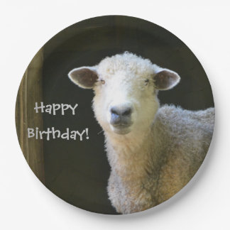 Happy Birthday Sheep 9 Inch Paper Plate