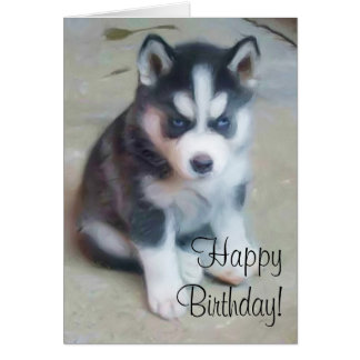Happy Birthday Siberian husky greeting card