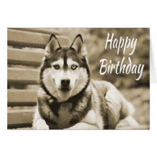 Happy Birthday Siberian Husky Puppy Dog Card