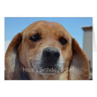 Happy Birthday Sister! Beagle Greeting Card
