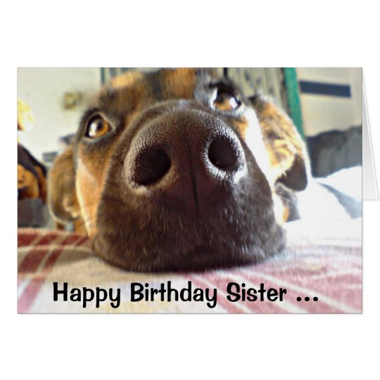 Happy Birthday Sister I NOSE it's your Cute