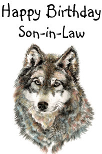 Happy Birthday Son In Law Humor Wolf Wolves Card