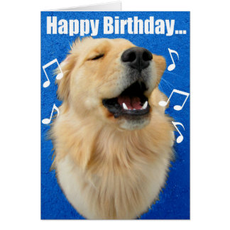 Video Dogs Barking Happy Birthday