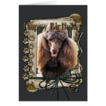 Happy Birthday - Stone Paws - Poodle - Chocolate Greeting Card