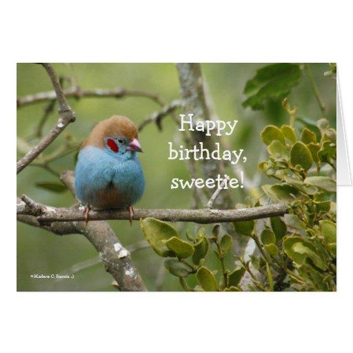 Happy Birthday, Sweetie Greeting Card