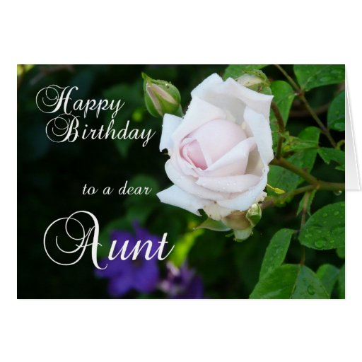 Happy Birthday to a dear Aunt-Pink Rose Greeting Card