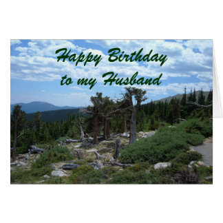 Happy Birthday to my Husband Greeting Card