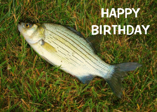 Bass Fishing Birthday Gifts Invitations Stationery Zazzle Uk