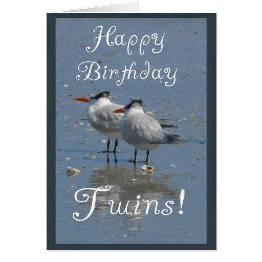 Happy Birthday Twins!-Two Identical Birds on Beach Greeting Cards