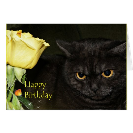 Happy Birthday - Venezia Cat Greeting card