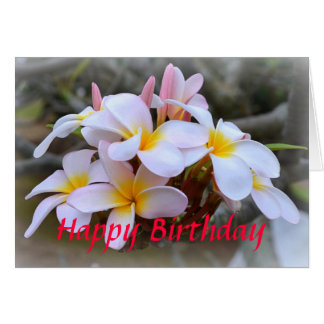 Happy Birthday White and Pink Plumeria, Pink Card