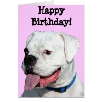 Happy Birthday White Boxer greeting card