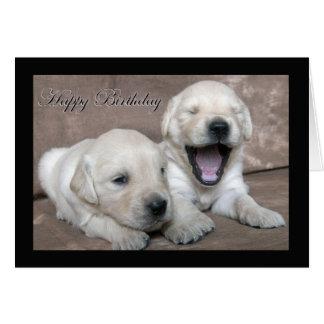 Happy Birthday yawning puppy Greeting Card