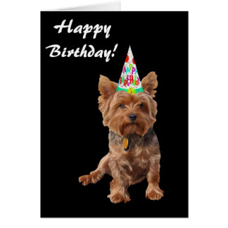 Happy Birthday Yorkshire Terrier Birthday Card