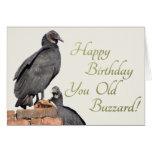 Happy Birthday You Old Buzzard! Greeting Card