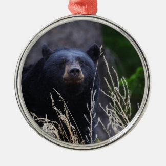 happy black bear christmas ornament