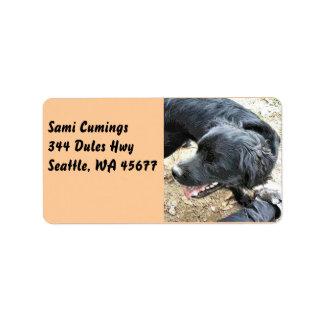 Happy Black Cocker Spaniel Address Label