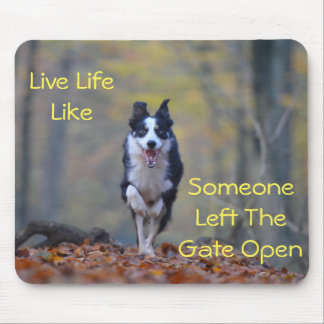 Happy Border Collie dog running and playing Mouse Mat