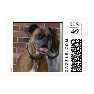 Happy Boxer dog stamp small
