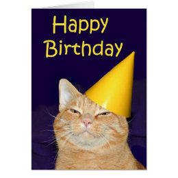 Cat birthday cards invitations zazzle happy cat happy birthday card bookmarktalkfo Choice Image