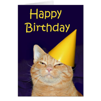 Happy cat Happy Birthday Card