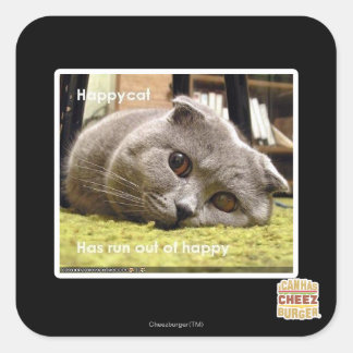 Happy cat, out of happy square sticker