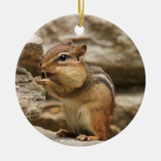 Happy chipmunk christmas ornament