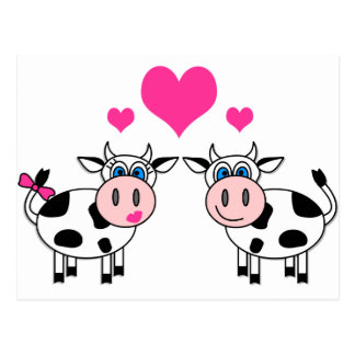 Happy Cows In Love Postcard