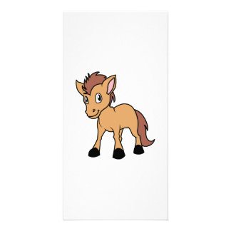 Happy Cute Brown Foal Little Horse Pony Colt Photo Card