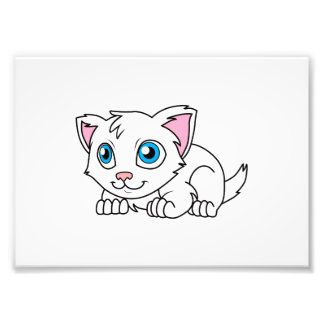 Happy Cute White Persian Cat with Blue Eyes Photographic Print