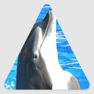 Happy dance bottlenose dolphin triangle sticker