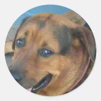 Happy Dog Classic Round Sticker