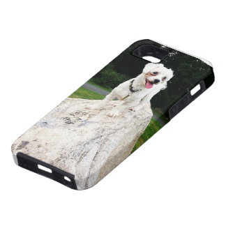 Happy Doggy (King of the World) iPhone 5 Cases