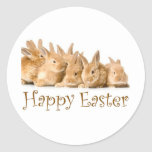 Happy Easter baby bunnies Round Stickers