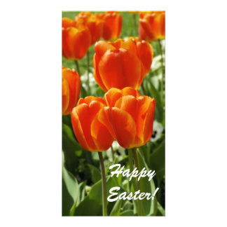 Happy Easter Card Photo Card Template