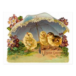 Happy Easter Chicks Vintage Postcard