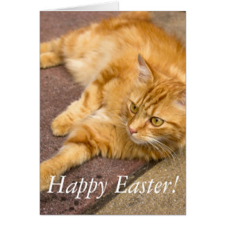 Happy Easter Ginger Cat Card