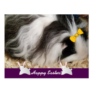 Happy Easter Guinea Pig Postcard